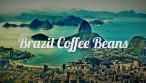 Brazil Coffee Beans Shop Article