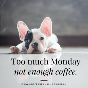 best coffee quote coffee beans shop