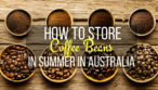 how to store your coffee beans you buy online in summer